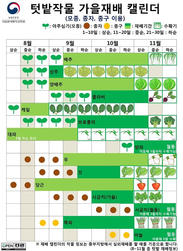 텃밭작물 가을재배 캘린더(모종, 종자, 종구 이용)-재배 캘린더의 작물 정보는 중부지방에서 실외재배를 할 때를 기준으로 합니다. 8~11월 중 텃밭 재배정보