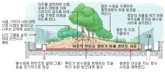 관리 중량형 옥상정원 구조