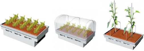 그림 3. 식물이 식재된 심지관수 토양백 재배용기(식재 식물에 따라 자주와 방충망 등을 선택적으로 활용)
