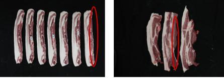 좌측사진은 세로로 절단되어 있는 삽겹살 부위 복부 피하지방층 반대면에는 근막이 있어 매끄럽고 우측사진은 세로로 절단된 앞다리살이 나열되어 있으며 칼로 절단되어 매끄럽지 않다.