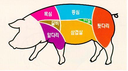 목심, 갈비, 앞다리, 등심, 안심, 삼겹살, 뒷다리 등 돼지고기 7개 부위 이미지