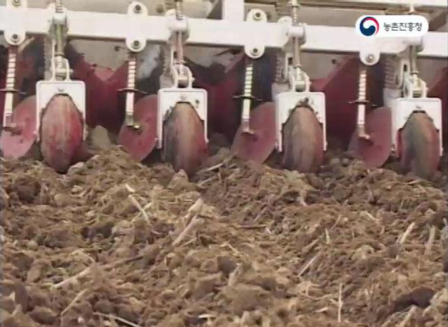 벼 요철골 직파 재배