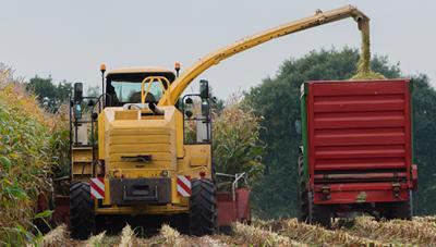 사료용 옥수수 적기수확과 사일리지 조제