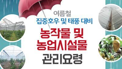 여름철 집중호우 및 태풍 대비 농작물 및 농업시설물 관리요령