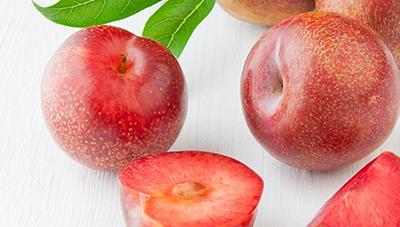 맛과 영양을 하나로, 자두와 살구를 모두 느낄 수 있는 플럼코트(Plumcot)