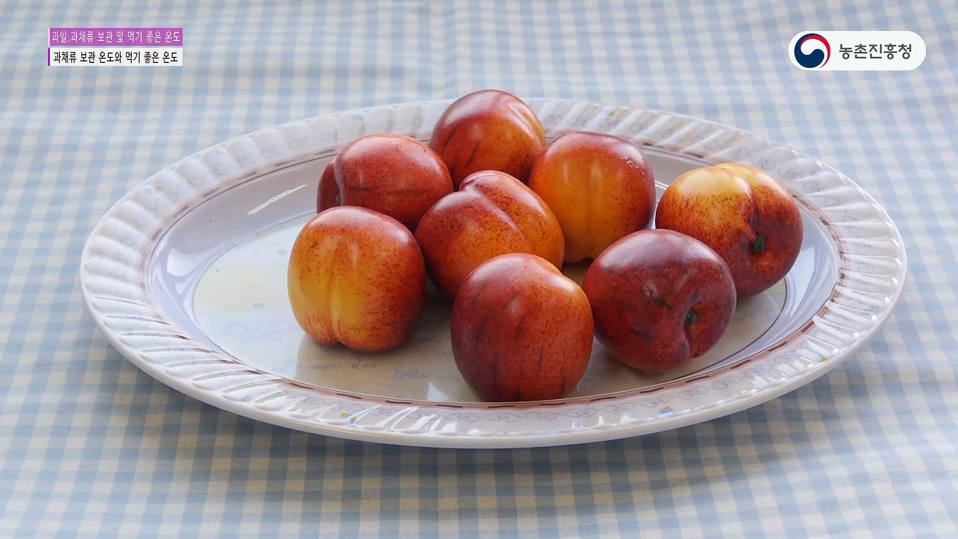 과일.과채류 보관 및 먹기 좋은 온도