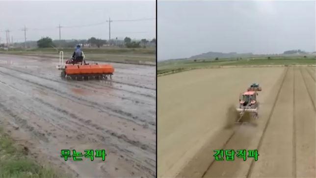 벼 직파 재배기술