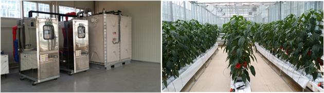 토마토 유리온실 에너지절감 패키지(지중저수열+다겹보온+근권난방) 기술
