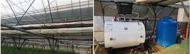 토마토 연동비닐하우스 패키지 (다겹보온 + 알루미늄스크린 + 축열난방) 기술
