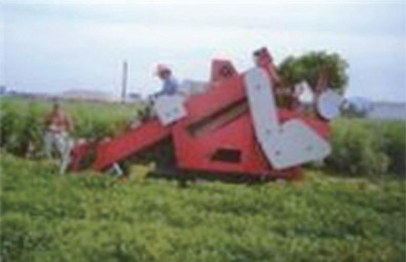 콤바인 수확작업 이미지