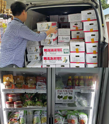 「수확후 관리기술 투입」딸기, 엽채류 싱가포르 시범 수출