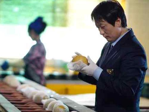 국산 신선농산물, 미국․대만 등 본격 수출 개시