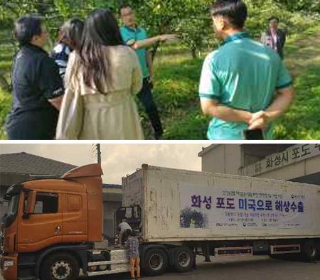 사과‧배‧단감 수출촉진을 위한 태국전문가 초청