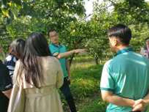 사과·배·단감 수출촉진을 위한 태국전문가 초청
