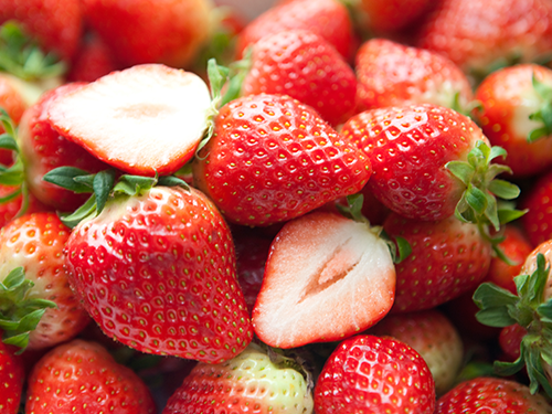 국산 딸기, 호주 시드니에 첫 수출