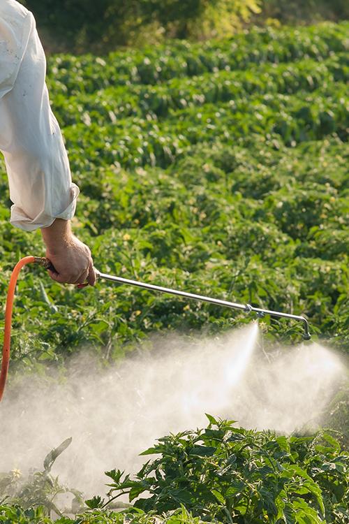 농약사용, '국내용'도 '수출용'도 안전하게!