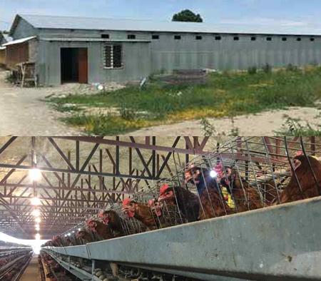 키르기스스탄 현지 수출전진기지 모습